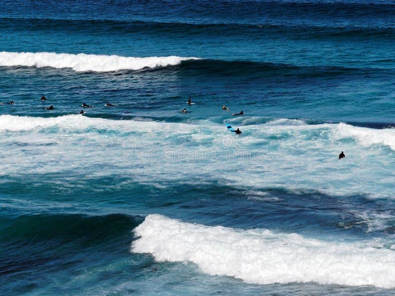 Biel Pienić się Pacyficznego oceanu fala zdjęcia stock