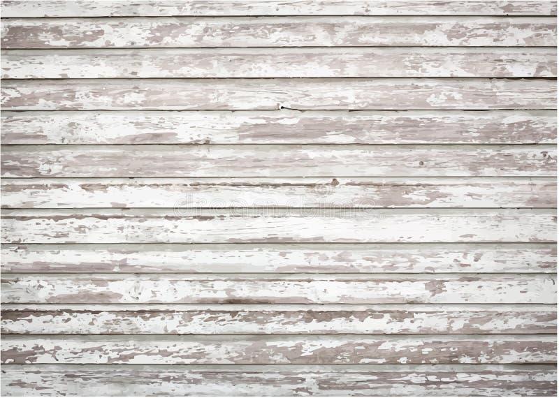 Biel, popielatego grunge drewniana ścienna tekstura, stara ilustracja wektor
