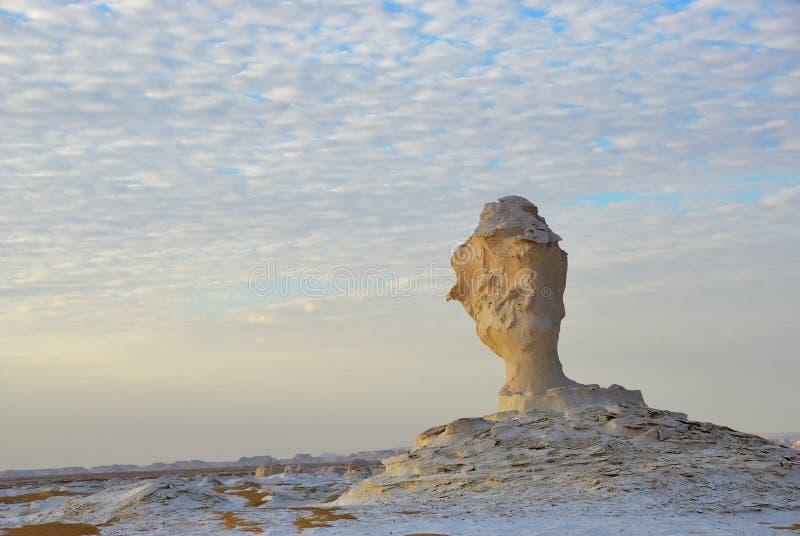 Biel pustynny Sahara Egipt zdjęcie stock