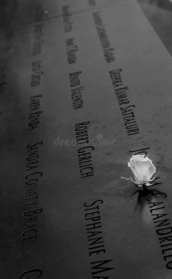 Biel róży pomnik fotografia stock