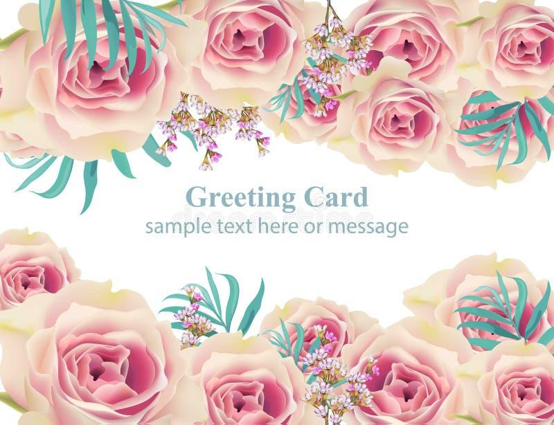 Biel róży wektoru karty tło Szczęśliwych wakacji kwieciści szablony ilustracji