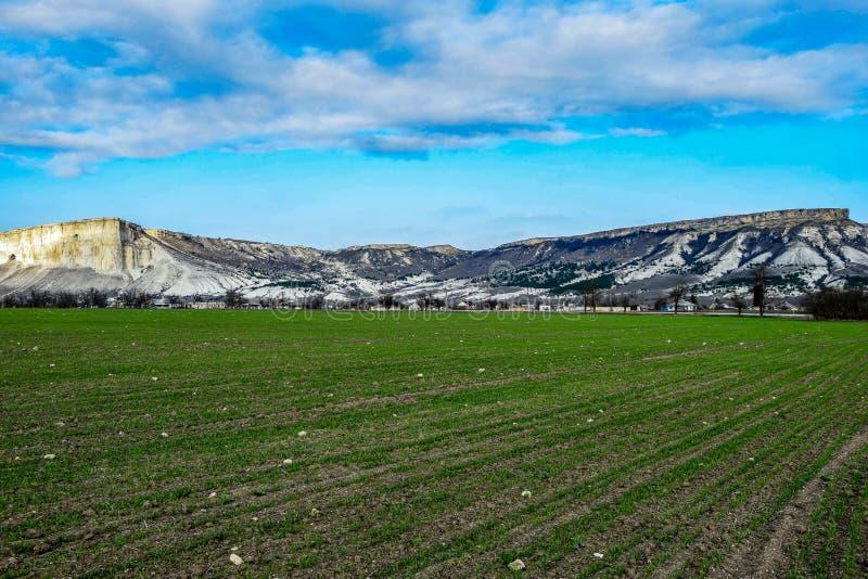 Biel skała w Crimea fotografia stock
