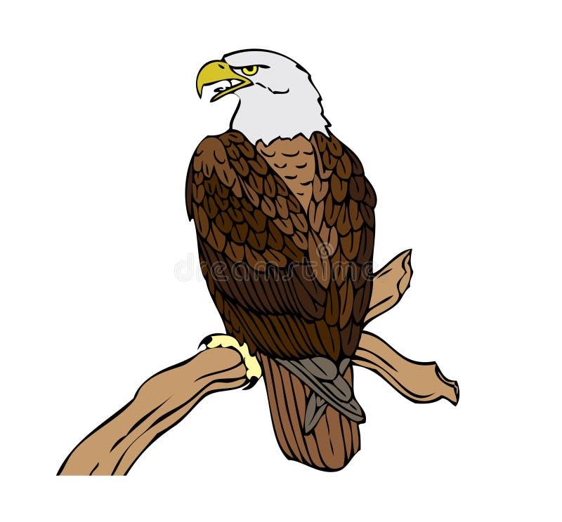Download Bielik amerykański ilustracja wektor. Obraz złożonej z życie - 5120374