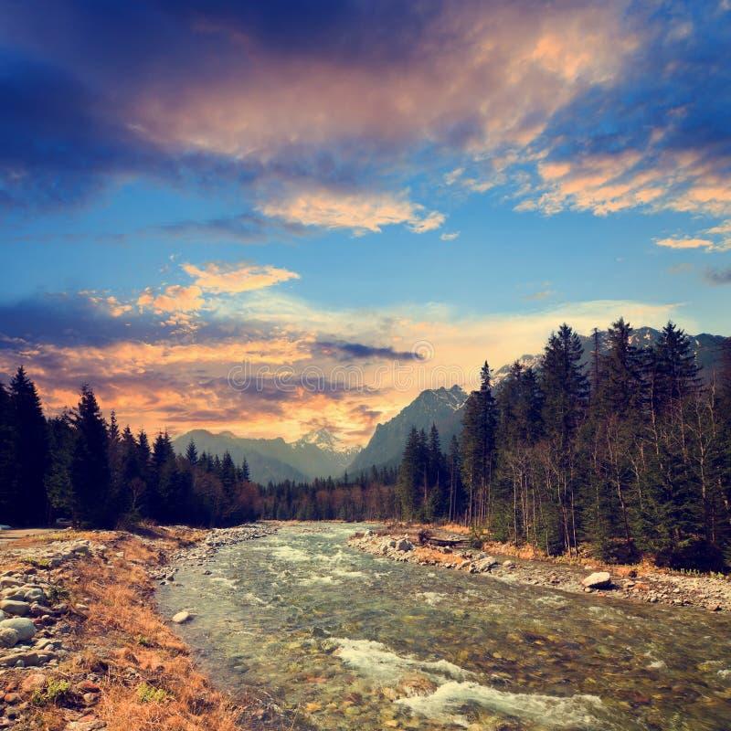 Bielovodska谷在高Tatras,斯洛伐克 库存图片