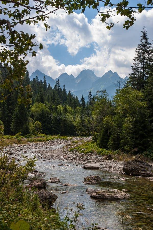 Bielovodska dolina w Tatry górach zdjęcie stock
