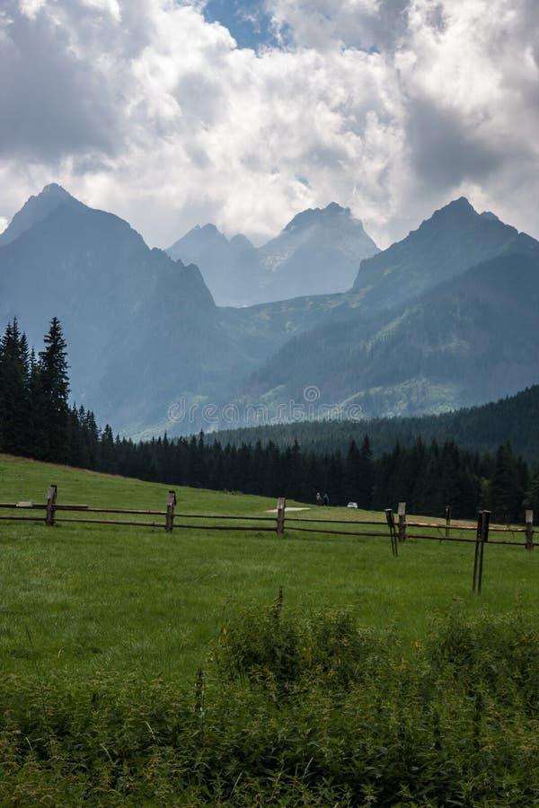 Bielovodska Valley in Tatry Mountains. Valley in Tatry Mountains in the summer royalty free stock photos