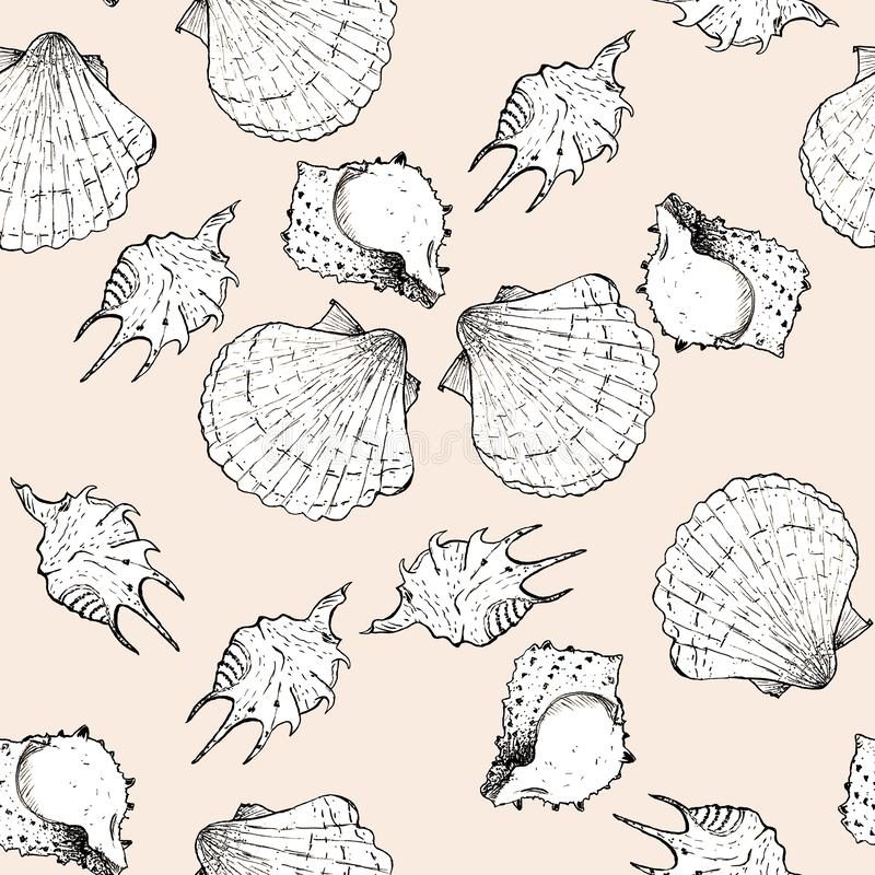 Bielu i czerni nakreślenia ilustracja seashells na modnym Crème De Pêche barwi Panton 2019-2020 tło bezszwowy wzoru ilustracja wektor