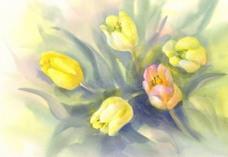 Bielu, koloru żółtego i menchii tulipanów akwarela na zielonym tle, ilustracji