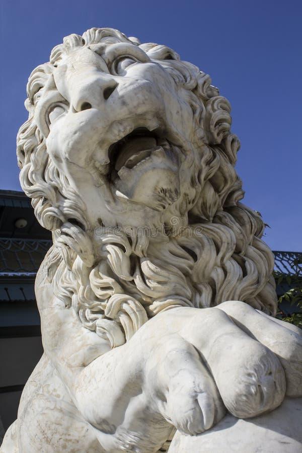 Bielu lwa marmurowa rzeźba obrazy royalty free