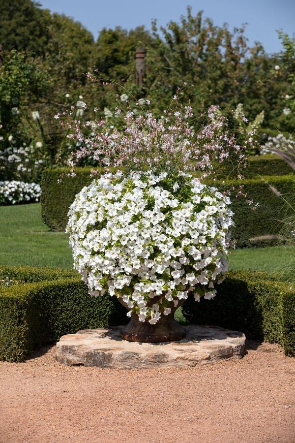 Bielu ogr?d w malowniczy Jardins Du Manoir d Eyrignac w Dordogne fotografia stock
