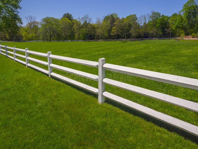 Bielu ogrodzenie na trawie obraz stock