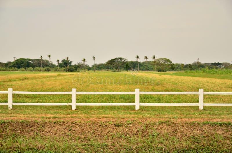 Bielu ogrodzenie w rolnym polu obrazy stock