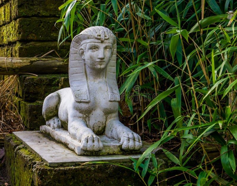 Bielu sfinksa kamienna statua w ogródzie, tradycyjne egipskie dekoracje obraz royalty free