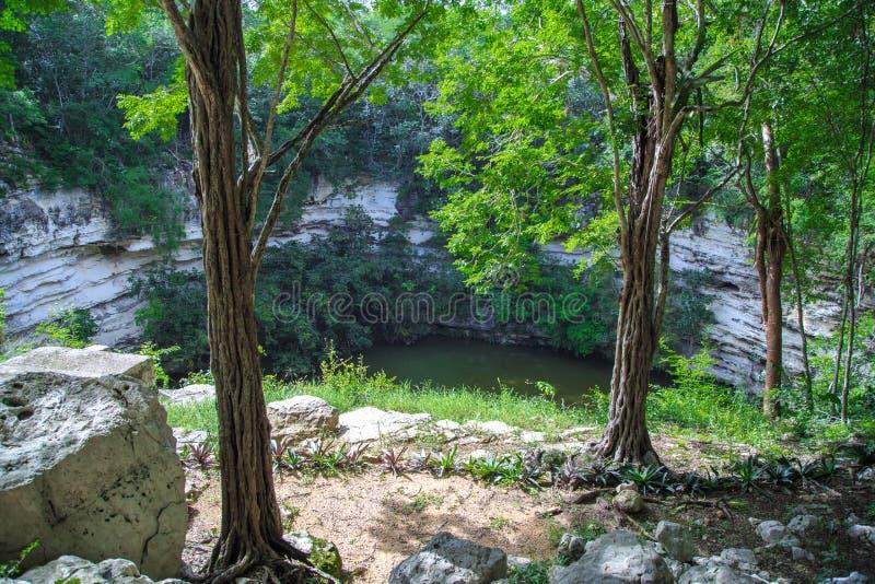 Bien de la mort dans Chichen Itza Cenote Mexique photo stock