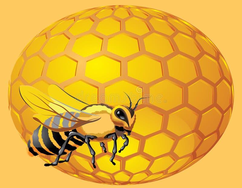 Biene mit Bienenwabekugel lizenzfreie abbildung