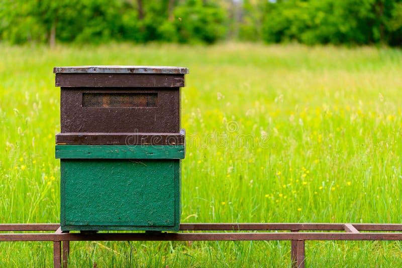 Bienenbienenstock auf dem Feld lizenzfreie stockfotografie