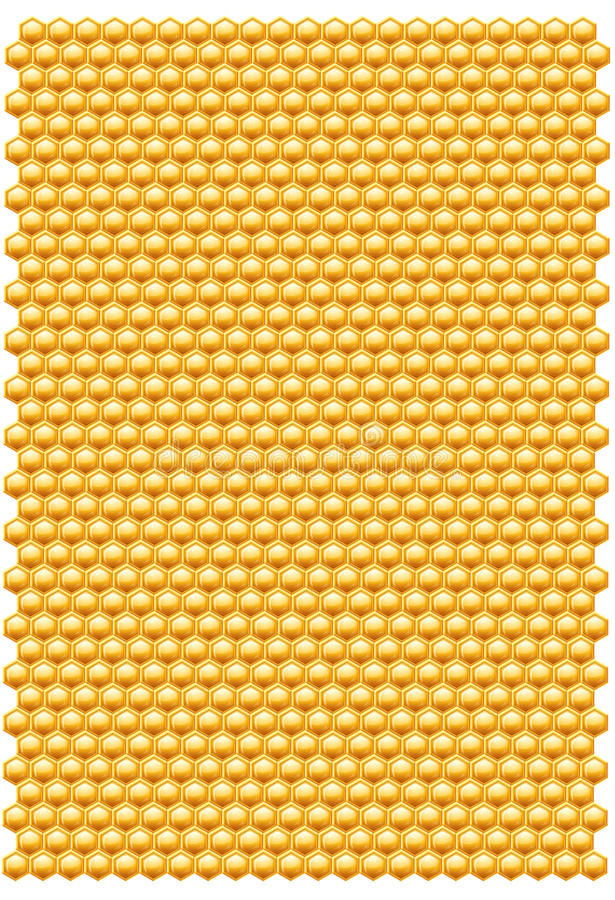 Bienenbienenwabemuster vektor abbildung
