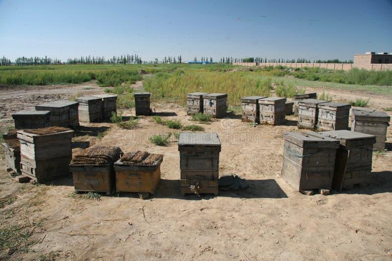 Bienenhaus in Inner Mongolia China lizenzfreie stockfotos