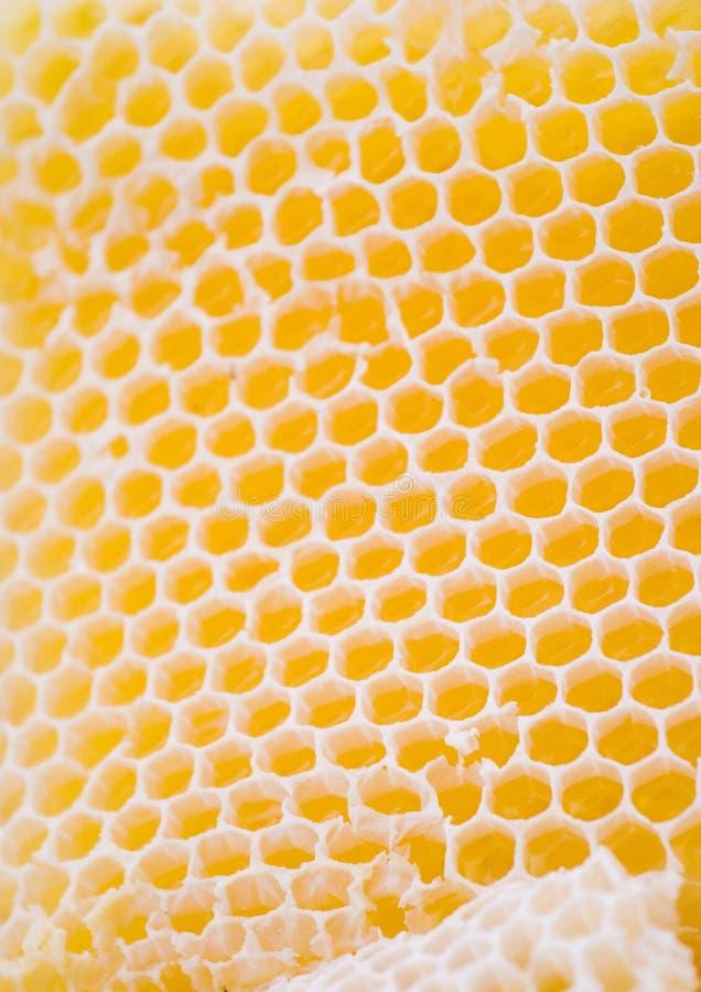 Bienenwabe stockfotos