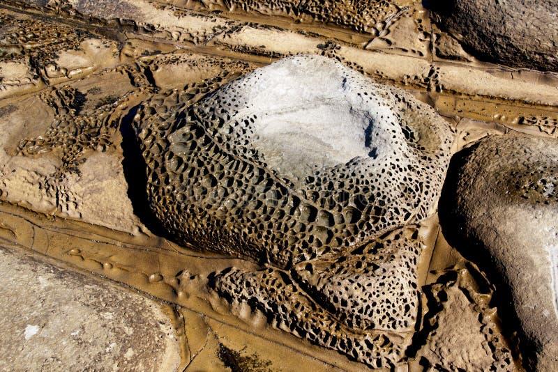 Bienenwabe Grübchen gebildetes Abnutzungs-Muster auf Felsen im Küsten-Pool lizenzfreie stockfotografie
