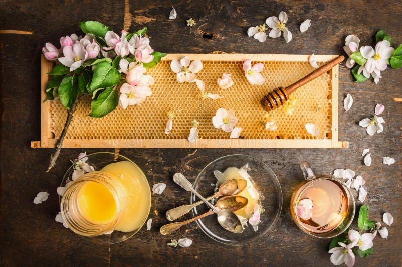 Bienenwabe mit hölzernem Schöpflöffel und frische Blüte, Glas mit Honig und Platte mit Weinleselöffeln lizenzfreie stockfotografie