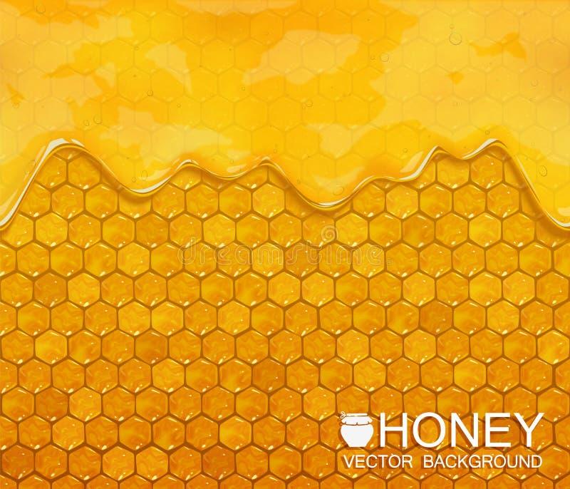 Bienenwaben und flüssiger Honig, Vektorhintergrund stock abbildung