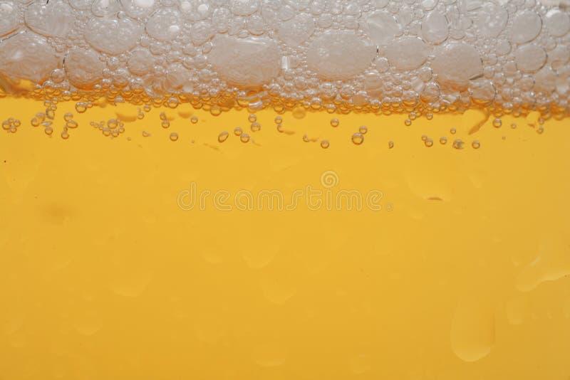 bier zdjęcia stock