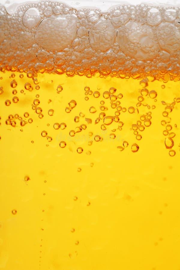 Bier imagem de stock royalty free