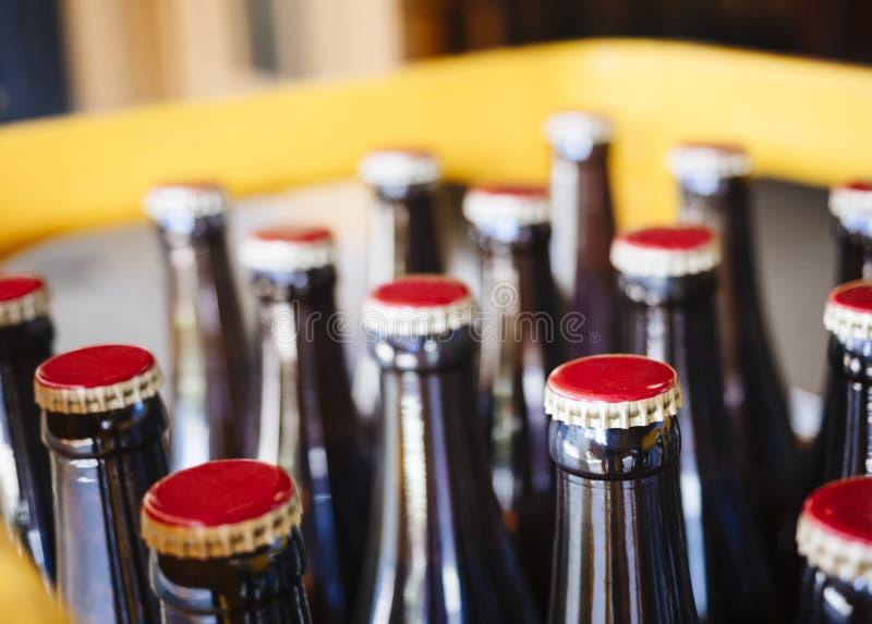 Bier-Brauereiverpackung Flaschen mit Kappenabschluß oben stockfotografie