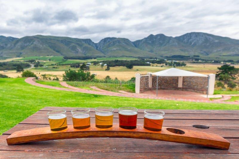 Bier, das Gläser auf einem hölzernen Behälter außerhalb der Brauerei schmeckt lizenzfreies stockfoto