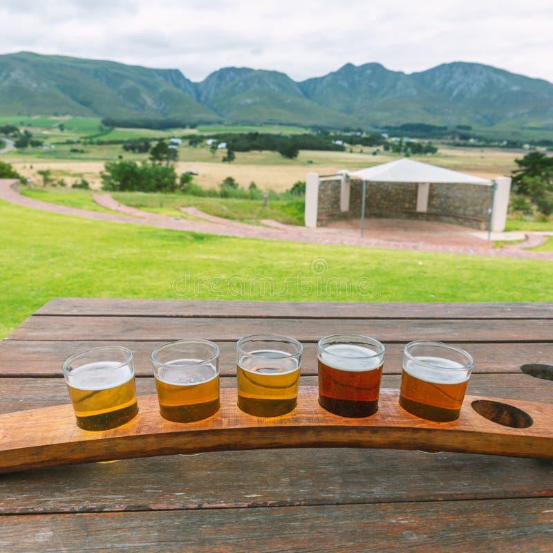 Bier, das Gläser auf einem hölzernen Behälter außerhalb der Brauerei schmeckt lizenzfreie stockbilder