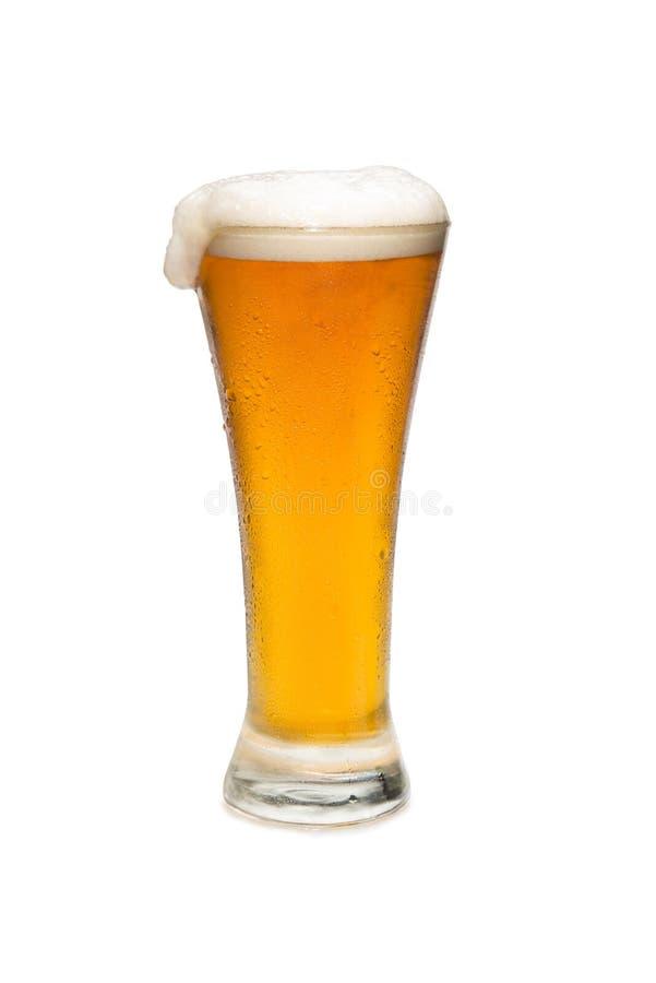 Bier in einem Pilsner-Glas mit Schaumgummi Spitze lizenzfreie stockfotografie