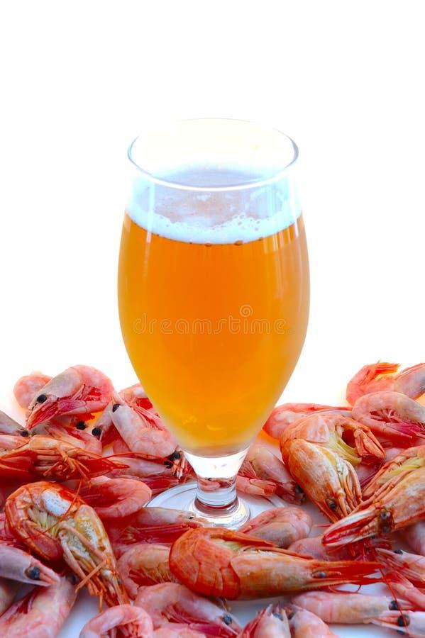 Bier en garnalen (garnalen). stock fotografie