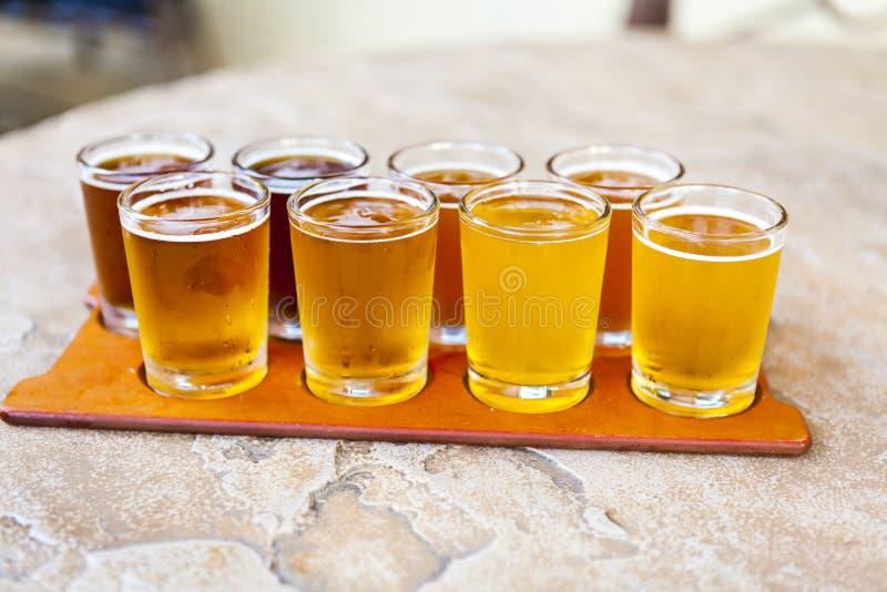 Bier-Flug stockfotografie