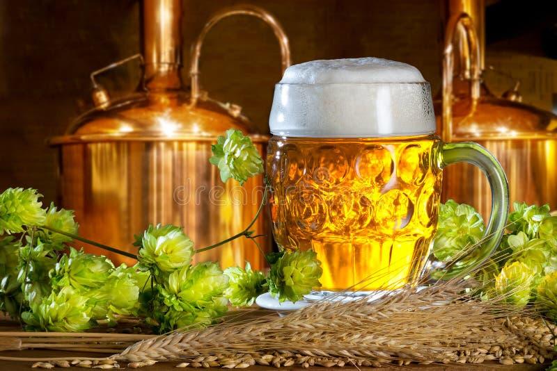 Bier-Glas mit Hopfen und Gerste stockbild