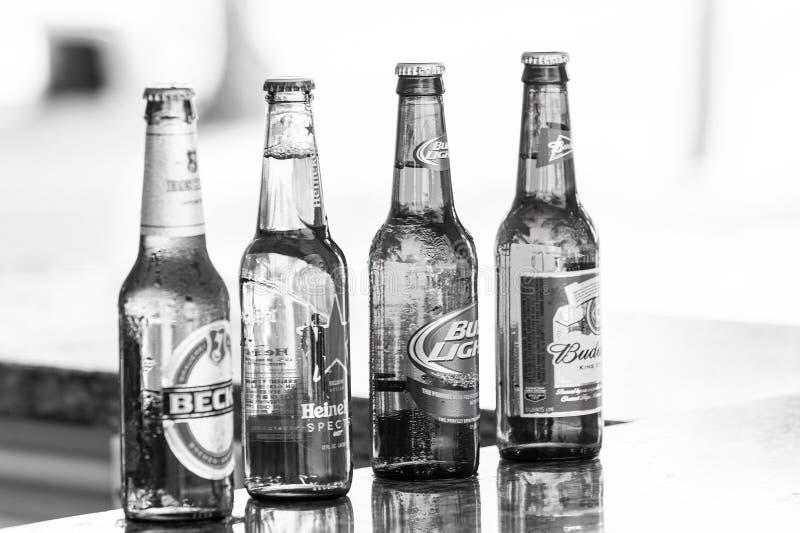 Bier in glasflessen op barteller Alcohol, slechte gewoonten Verfrissing, drank, drank Bierpartij, viering royalty-vrije stock fotografie