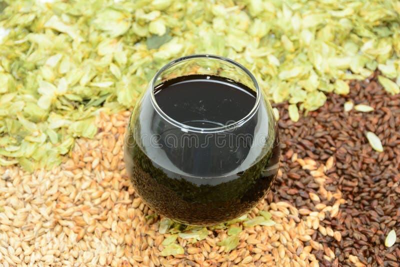 Bier im Glas mit Korn und in den Hopfen mit Schallkanone lizenzfreie stockfotografie