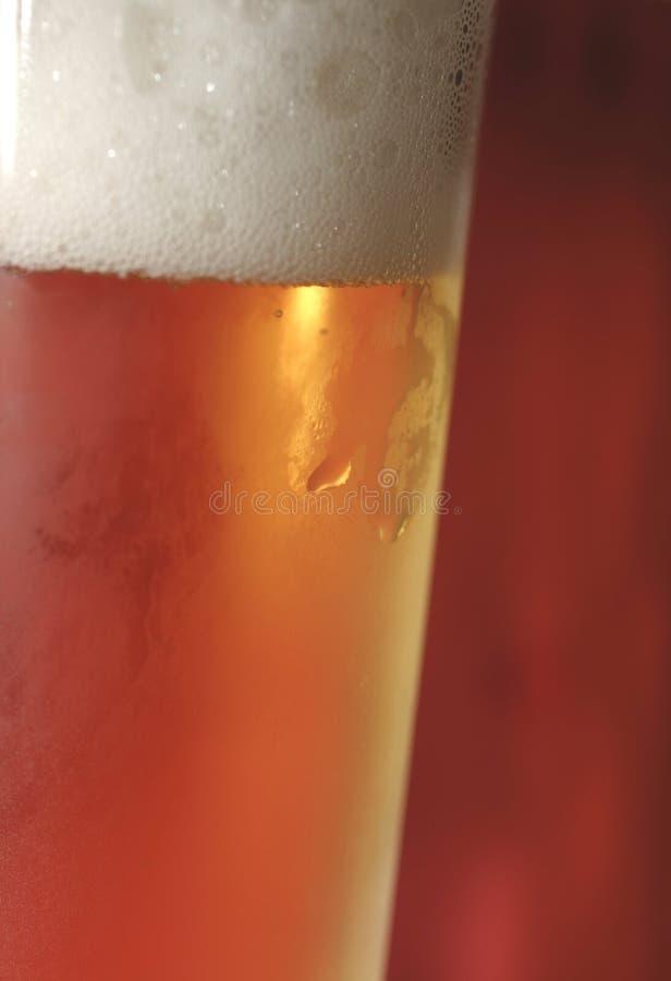 Bier - Makro lizenzfreie stockfotos