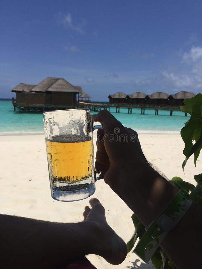 bier Maldives zdjęcia stock