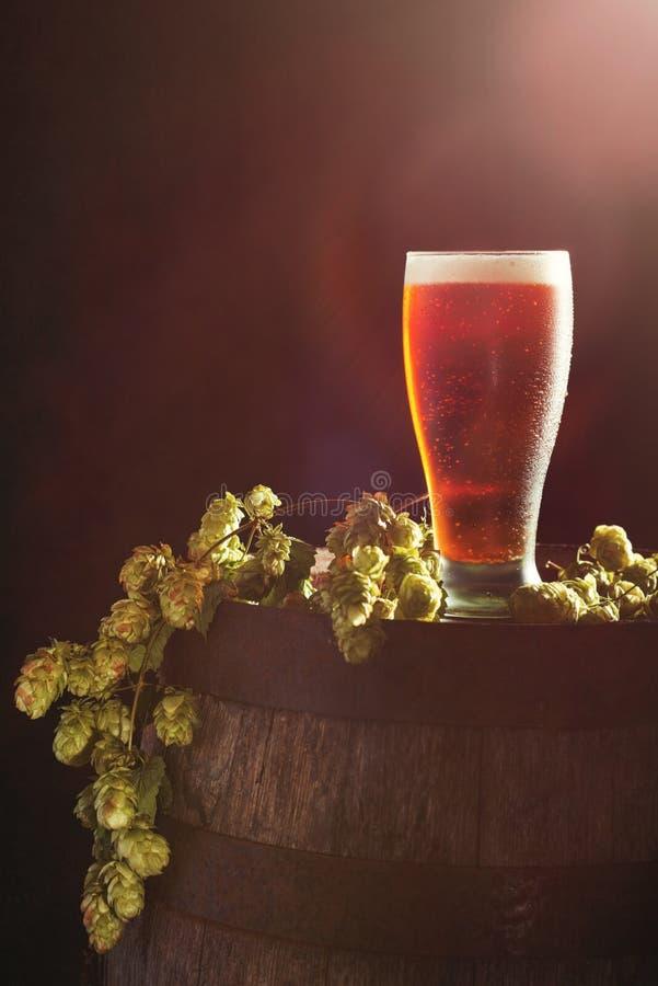 Bier met Hop royalty-vrije stock afbeelding