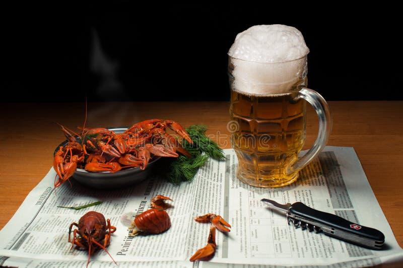 Bier mit Panzerkrebsen lizenzfreie stockbilder