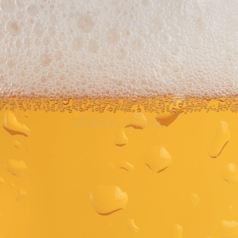 Bier mit Schaum stockbilder