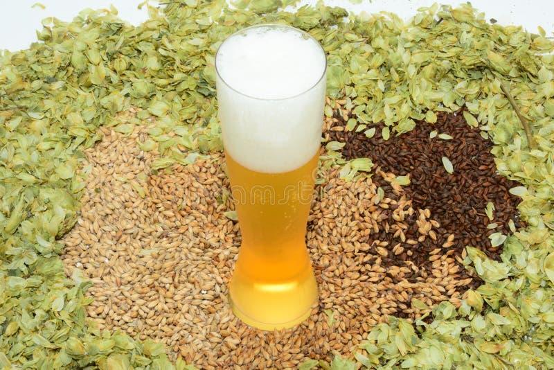 Bier in Pilsner-Glas lizenzfreie stockbilder