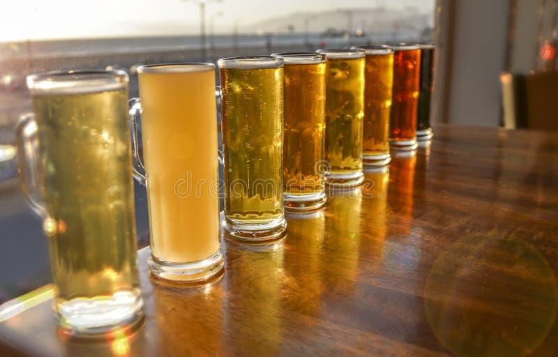 Bier-Proben stockfotografie
