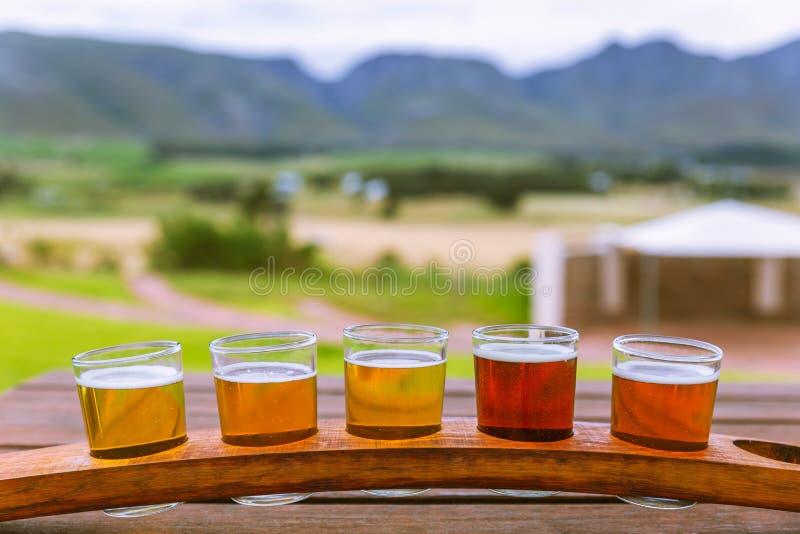 Bier proevende glazen op een houten dienblad buiten de brouwerij stock afbeelding