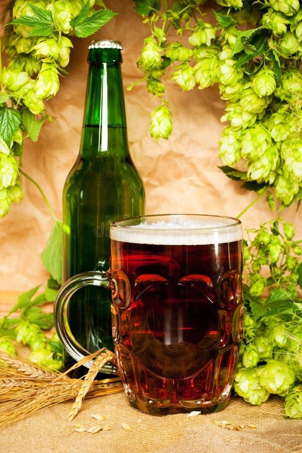 Bier und Hopfen lizenzfreie stockbilder