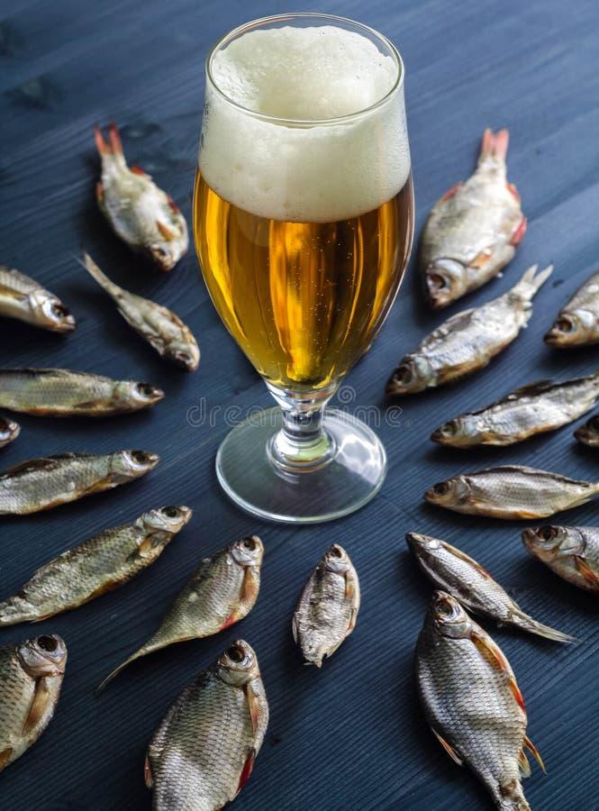 Bier und Trockenfisch Russischer Snack lizenzfreie stockfotos