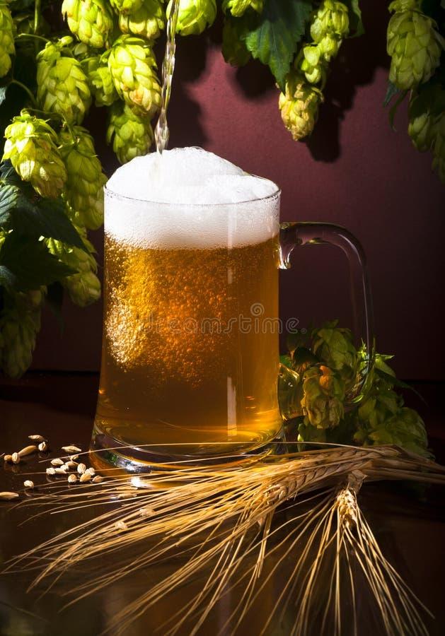 Bier, Weizen und Hopfen stockfotografie