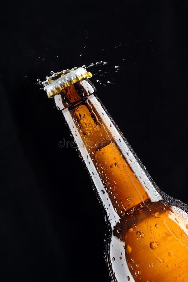 Bierflasche-Wasserspritzen lizenzfreie stockbilder