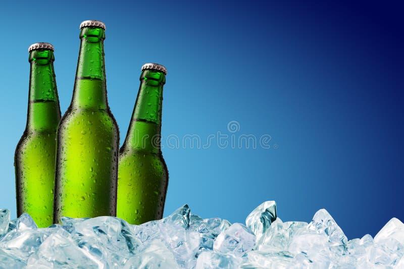 Bierflaschen auf Eis lizenzfreie stockbilder